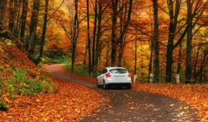 Care for Your Car this Autumn
